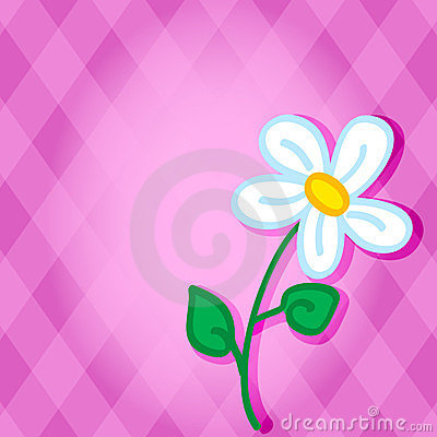 Cute daisy over pink diamond background