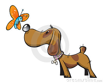 Cute  dog and butterfly