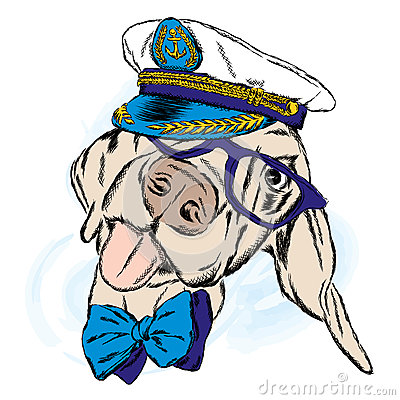 Free Cute Dog In The Captain`s Cap. Captain. Royalty Free Stock Photos - 83547968