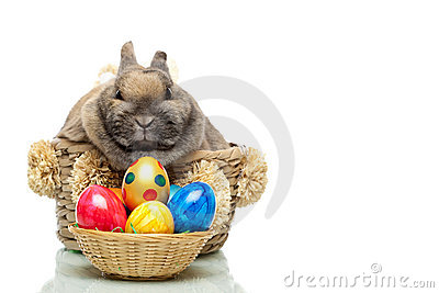 Cute Easter bunny with eggs sitting in basket