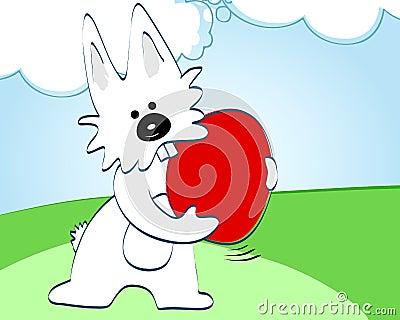 cute easter bunny pics. cute easter bunny pictures to