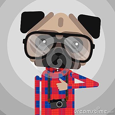 Cute fashion Hipster pug dog pet