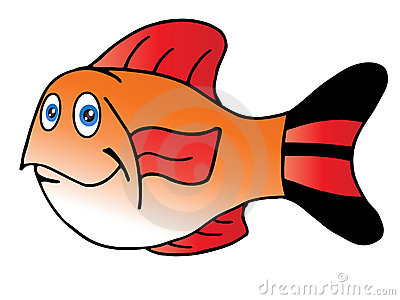 The cute fish red fin