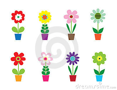 Cute Flowers In Pots