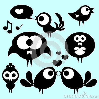 Cute funny birds
