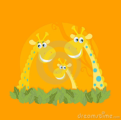 Cute giraffe family portrait
