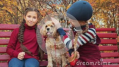Cute glückliche Mädchen, die im Herbstpark Hunde streicheln stock video