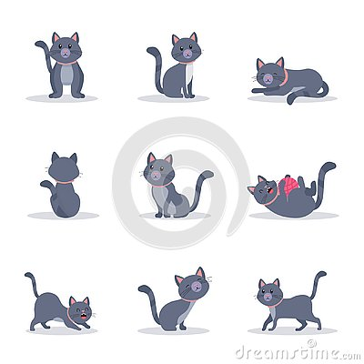 Cute grey cats vector color illustrations set Vector Illustration