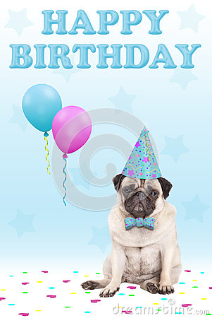 Free Cute Grumpy Faced Pug Puppy Dog With Party Hat, Balloons, Confetti And Text Happy Birthday, On Blue Background Royalty Free Stock Image - 86198446