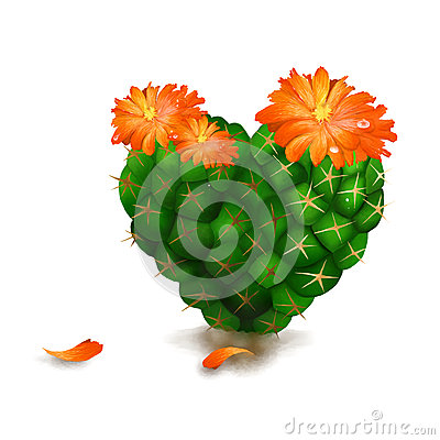 Cute Heart Cactus  on White Background