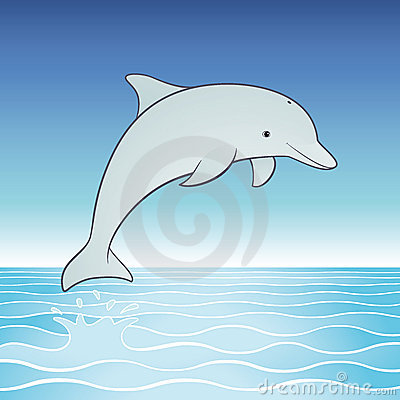 Cute Jumping Dolphin