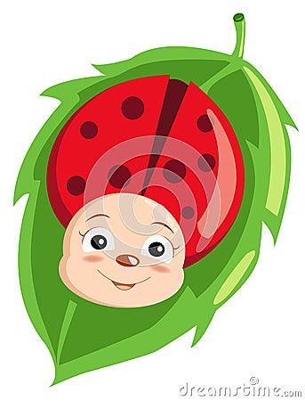 Cute ladybird
