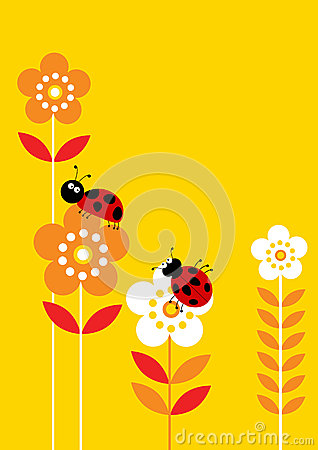 Lady birds and flowers