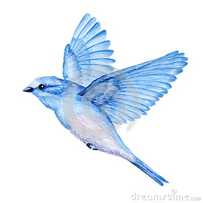 Free Cute Little Blue Bird. Watercolor Illustration Stock Photography - 109045952