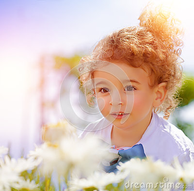 Free Cute Little Boy On Daisy Field Stock Images - 32670034