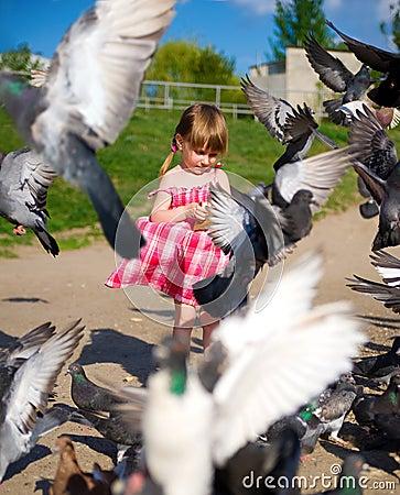 Free Cute Little Girl Dress Feeding Pigeons Stock Photography - 14338952