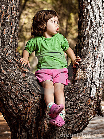 Cute little playful girl sitting on a tree