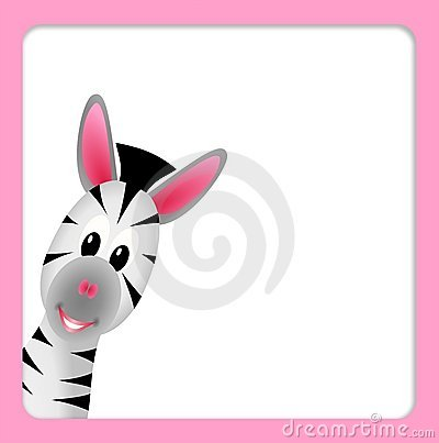 Free Cute Little Zebra On White Background Royalty Free Stock Photography - 21449727