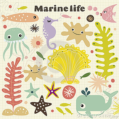 cute marinelife Vector Illustration
