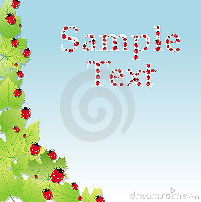 Cute party invitation card with ladybirds vector