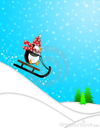 Cute Penguin on Sled Downhill Illustration