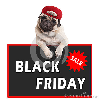 Free Cute Pug Puppy Dog Wearing Red Cap And Hanging With Paws On Sign With Text Black Friday, On White Background Royalty Free Stock Photography - 80763797