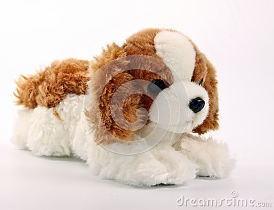 Cute puppy toy shot on white