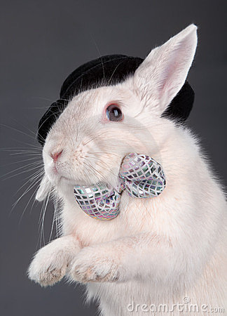 Cute rabbit in top hat and bow-ti