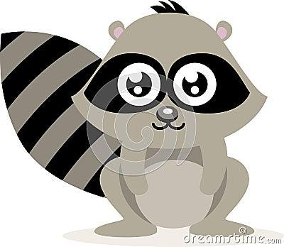Cute Raccoon Stock Image Image 20790181