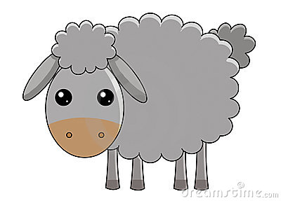 Cute sheep on white background