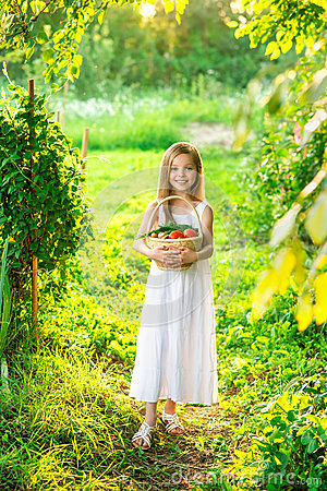 Free Cute Smiling Little Girl Holds Basket With Fruit And Vegetables Royalty Free Stock Image - 69988216