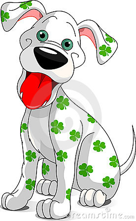 Cute smiling St. Patrick s Day dog