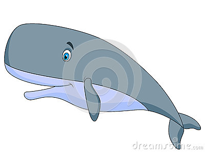 She can sperm whale cartoon