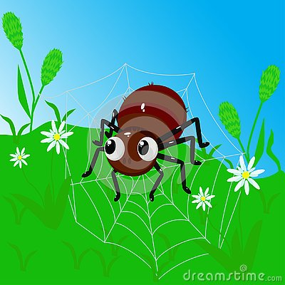 Spider on a web among grass - vector illustration, eps Vector Illustration