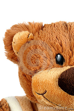 Free Cute Teddy Bear Stock Photos - 8508223