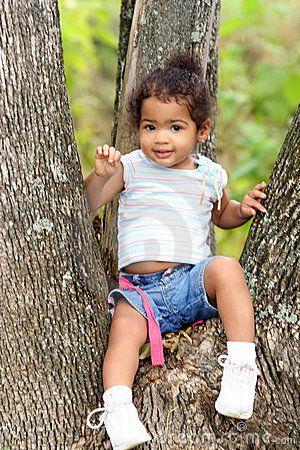 Cute toddler in a tree