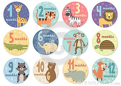 Cute twelve months stickers with animals for babies Vector Illustration