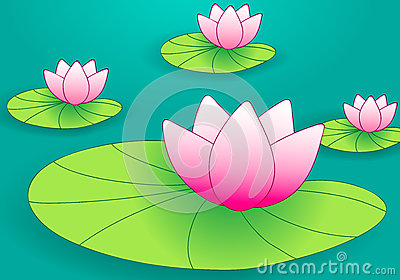 Cute waterlilies