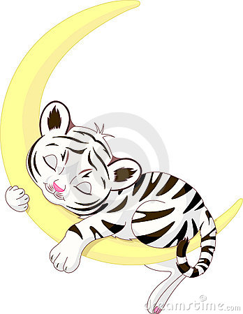 Free Cute White Tiger Cub Sleeping On The Moon Royalty Free Stock Photos - 14857928