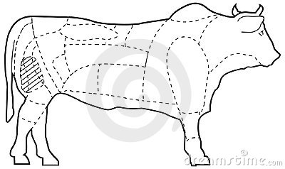 Cuts of beef illustration