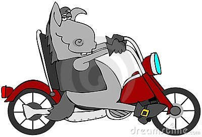 Cycle Donkey