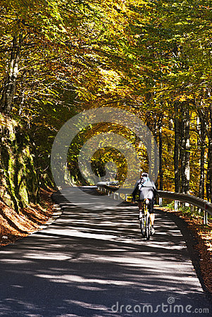 Cycling in a beautiful road