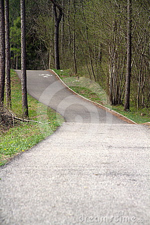 Cycling path on the woods
