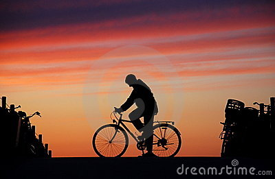 Cyclist At Rest