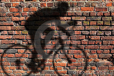 Cyclist shadow on wall