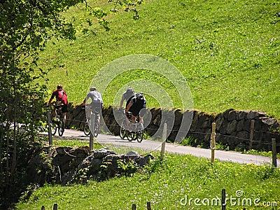 Cyclists #2