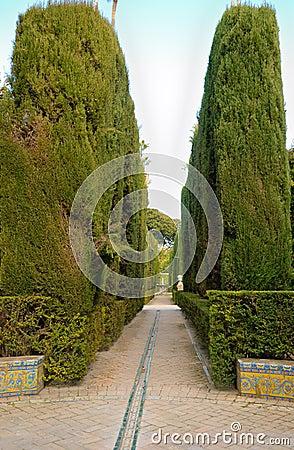 Cypress path Alcazar