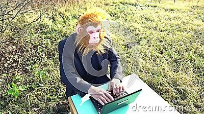 Człowiek w garniturze i masce dla małp szympansów siedzący z laptopem na podwórku, zabawny, niezwykły surrealistyczny zdjęcie wideo
