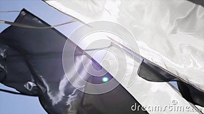 Czarny i biały flaga kiwa od wiatru w lato słonecznym dniu festiwale sunbeams błękitne niebo zbiory