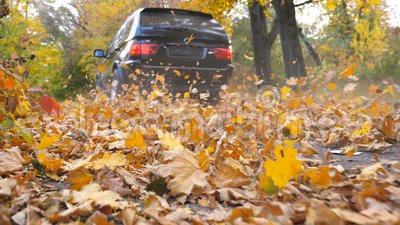 Czarny SUV jeżdżenia post wzdłuż pustej drogi nad kolorem żółtym opuszcza przy parkiem Kolorowy jesieni ulistnienie lata za spod zbiory